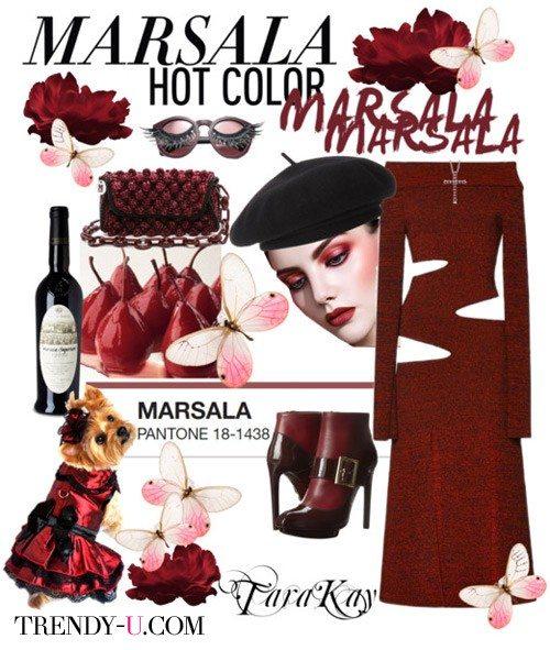Платье цвета марсала, сумка в тон и черные туфли, не считая собачки:)