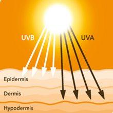 UVB и UVA лучи