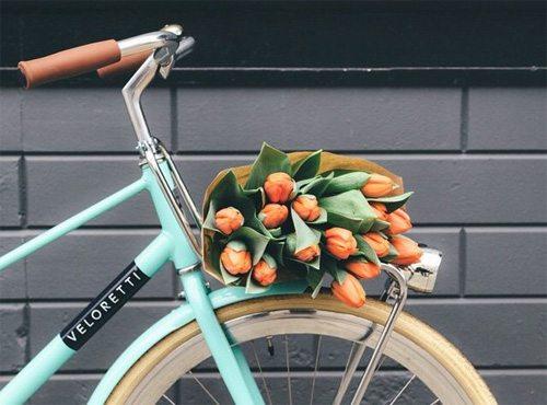 Велосипед и тюльпаны