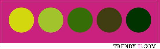 Зеленый и фуксия. Сочетания цветов