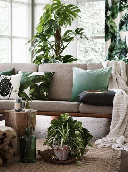 Цветы в вазонах и подушки с принтом в виде цветов - элементы декора 2018