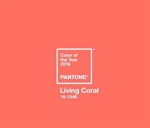 Самый модный цвет 2019-го года по версии Pantone - коралловый и его оттенки