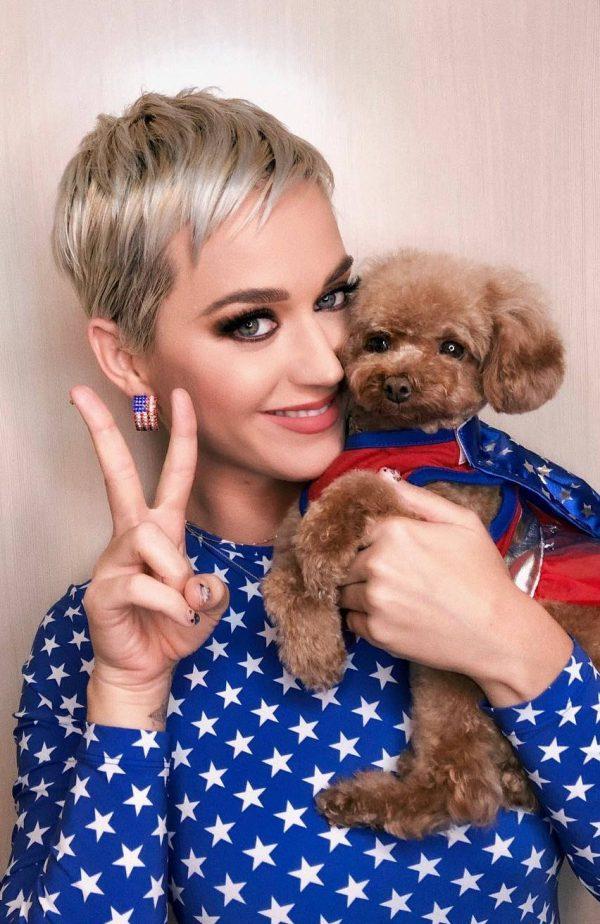 Katy Perry: блондинка с короткой стрижкой