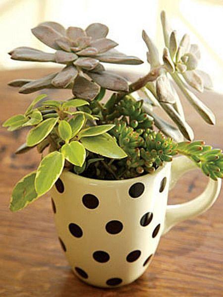 Поддержать принт горох в интерьере может даже чашка. Если на ней принт горох